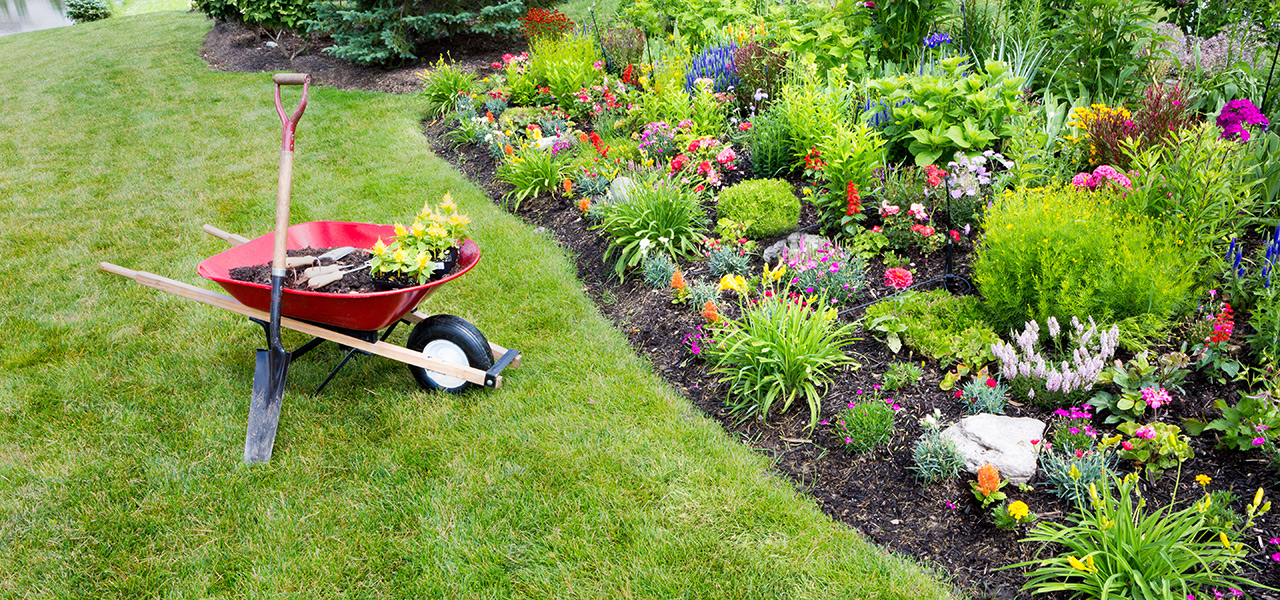 Image result for landscaping Geelong